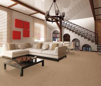 Carpet Flooring in Charlotte